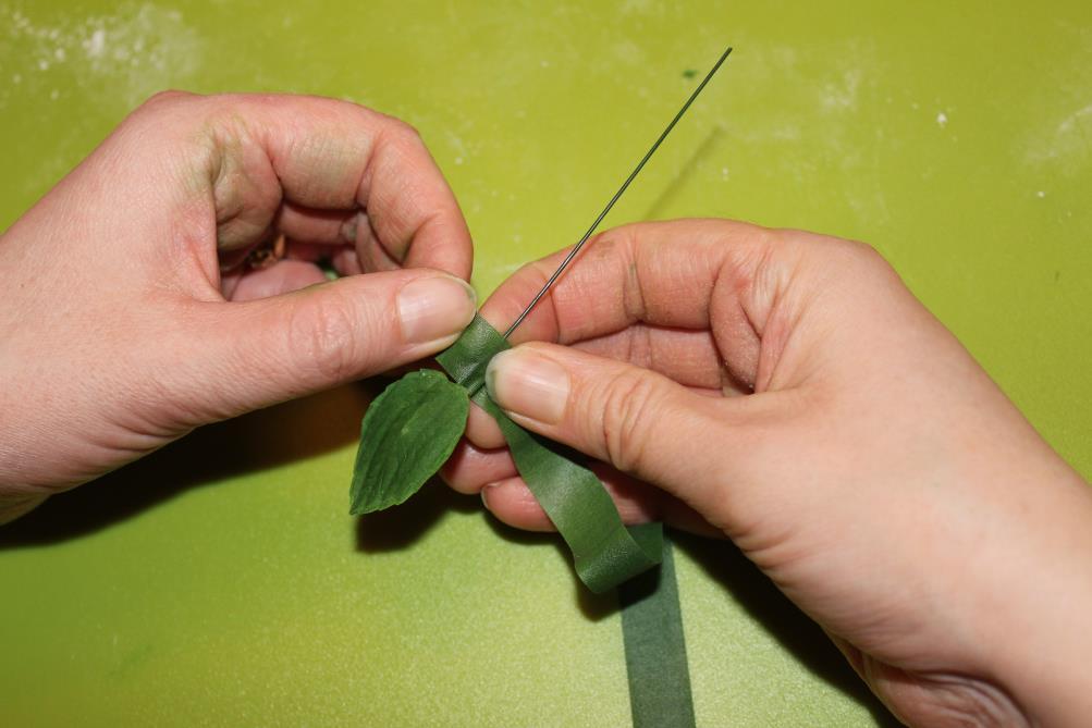 Grønt blad 18