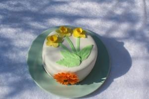 Påskekage (og fødselsdagskage..)
