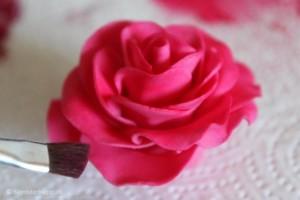 Sådan farver du roser