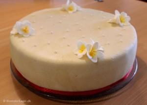 Fødselsdagskage med frangipani blomster