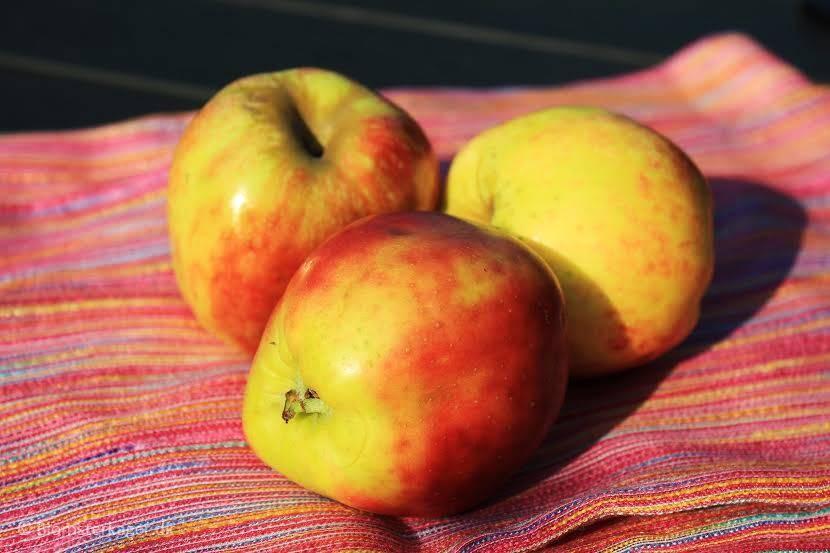 Æble1