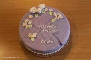 Fødselsdagskage til 11 årig pige