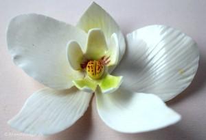 Sådan laver du en orkide i fondant / gum paste til en bryllupskage