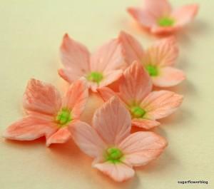 Sådan laver du en hortensia blomst i fondant / gum paste
