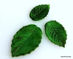 Lær at lave grønne blade i fondant / gum paste