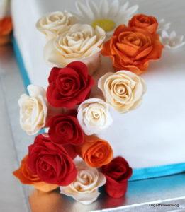 Fødselsdagskage til 70 års fødselsdagsfest